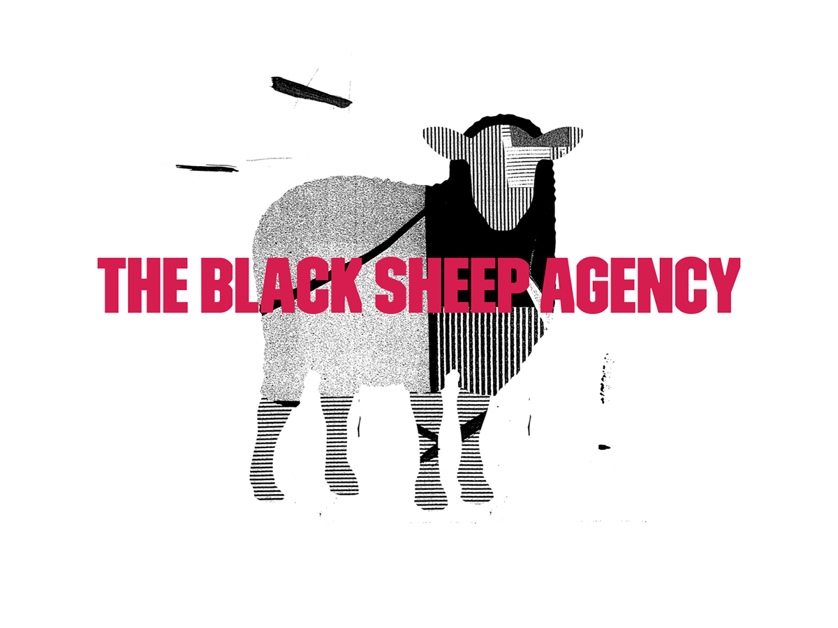The Black Sheep Agency jobs